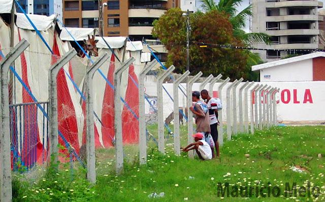 Girafa: presos do lado de fora (crédito: Maurício Melo)