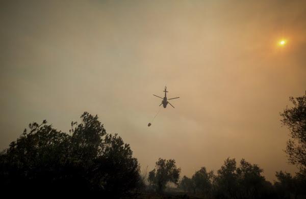 Φωτιά στην Εύβοια: Εκκενώνονται οι Κεχριές και άλλα δύο χωριά, οι καπνοί δυσκολεύουν τα εναέρια μέσα (video)