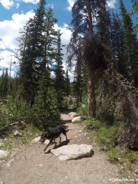 Hiking to Ruth Lake, Uintas