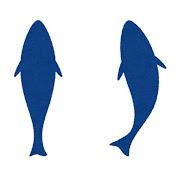 上から見た魚のシルエットのイラスト