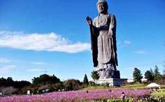 Daibutsu ushiku