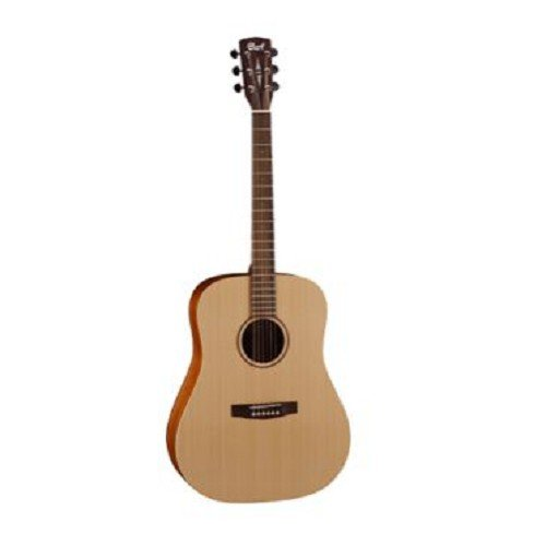 Gitar-Klasik-Akustik-Elektrik