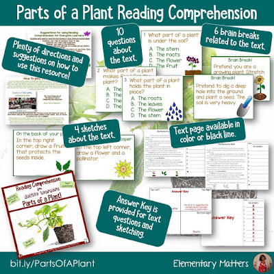 https://www.teacherspayteachers.com/Product/Parts-of-a-Plant-for-Active-Learners-2552972?utm_source=blog%20post%20on%20active%20students%20&utm_campaign=Parts%20of%20a%20Plant