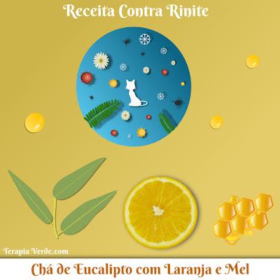 Receita Contra Rinite: Chá de Eucalipto com Laranja e Mel