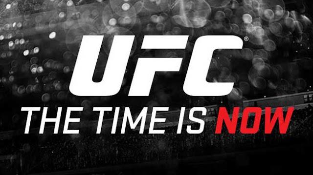 Melhores Sites para Apostar no UFC