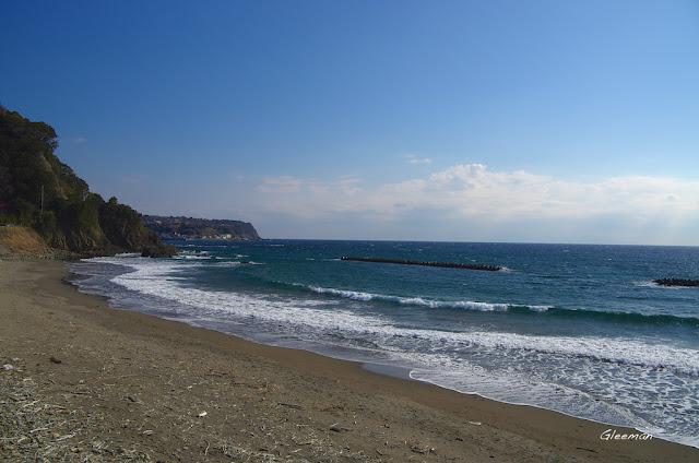 伊豆・河津櫻祭,河津浜海岸