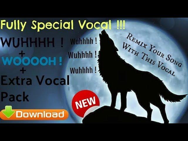 Tapori Vocals Pack (Deshi Mix) For Professional Dj || By DJ