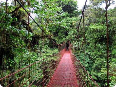 Bosque Nuboso de Monteverde, Costa Rica