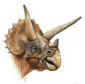 13-Triceratops-Julianna-www-designstack-co
