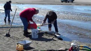 Onde achar ouro de aluvião