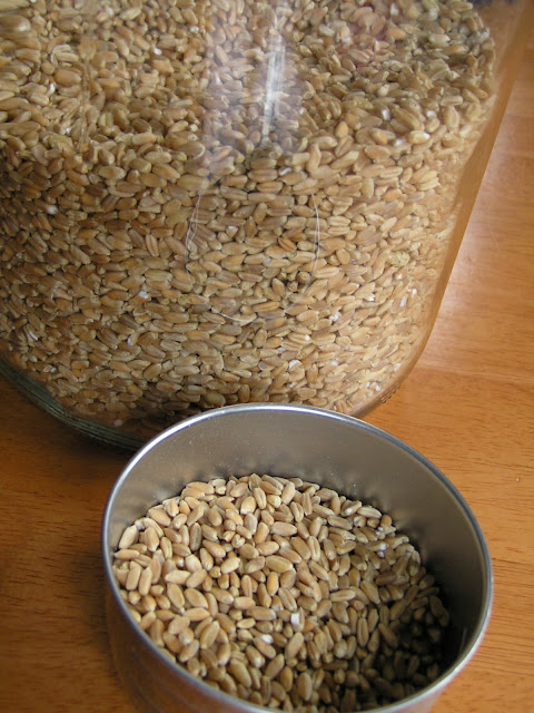 bulk whole wheat
