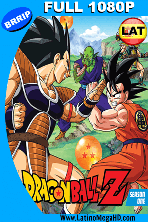 Dragon Ball Z: Saga Saiyajin (1989) Latino Full HD 1080P (1996–2003)