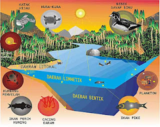 Keanekaragaman Hayati Tingkat EKOSISTEM,Gambar 13. Empat Daerah Utama Pada Danau Air Tawar