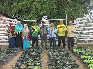Agen Sarana Hidroponik Berkualitas di Balikpapan, Agen Sarana Hidroponik Berkualitas di Bandung, Agen Sarana Hidroponik Berkualitas di Bekasi