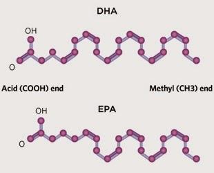 O que é omega-3?