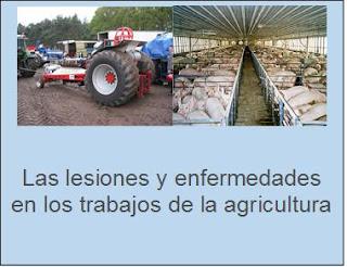 Lesiones en trabajos de agricultura.