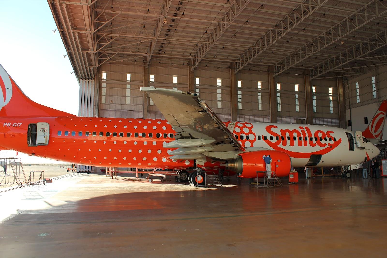 A aeronave foi toda pintada em Confins bbd94218dcf