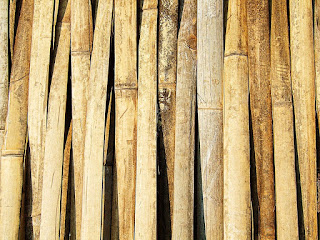 pengawetan-bambu-secara-lengkap.jpg