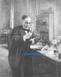 Pasteur in his laboratory. A 1925 wood engraving by Timothy Cole. (From Zigrosser C. Medicine and the Artist [Ars Medica]. New York: Dover Publications, Inc.; 1970. With permission from the Philadelphia Museum of Art.)
