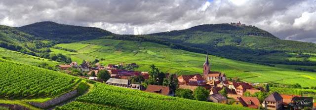 Wine region of Alsace