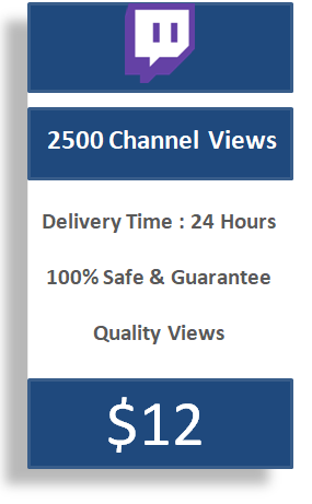 2500 twitch channel Views