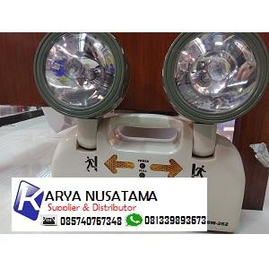 Jual Emergency Lamp Cat Eye CMOS type CS262 di Sukoharjo