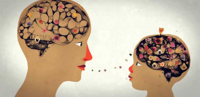 neurociência formação de professores e práticas pedagógicas