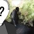 Você conhece o Buraco do Padre de Ponta Grossa?