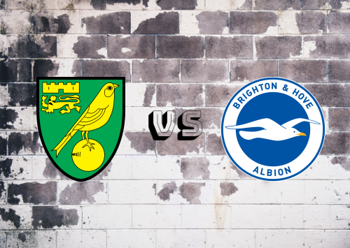 Norwich City vs Brighton & Hove Albion  Resumen