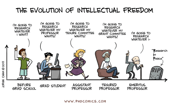 An analysis of the evolution of freedom