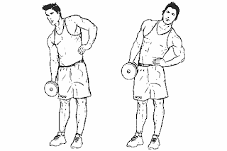 6. Dumbbell Side Bends
