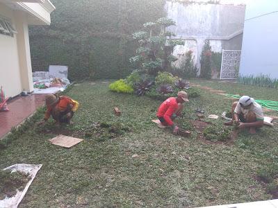 https://www.desaintamansurabaya.com/2020/01/pakar-taman-surabaya-tianggadhaart_28.html