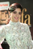 Poonam Kaur in Beautiful Floor Length Gown at IIFA Utsavam Awards 2017  Day 2  Exclusive 16.JPG