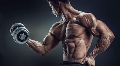تضخيم عضلات الجسم
