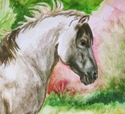 http://heckhorses.blogspot.com/