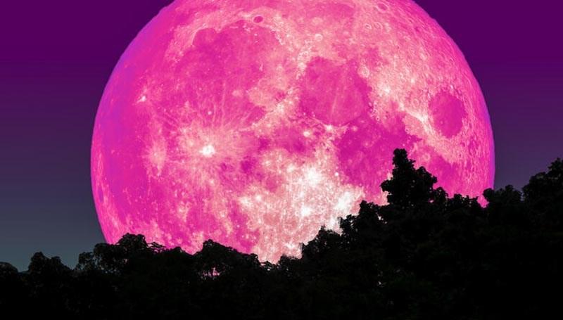 super-lua-rosa