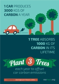 #Iamstillin how to support the paris agreement and decrease your household emissions plant trees