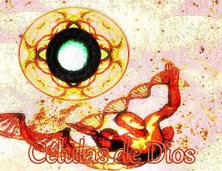 Las profundidades y superficie de su Ser están impregnadas de las Células Divinas que Nosotros, su Madre Padre Dios les dimos cuando compartimos Nuestra Esencia en el momento de la Creación.