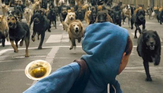 Lili poursuivie par des chien en meute