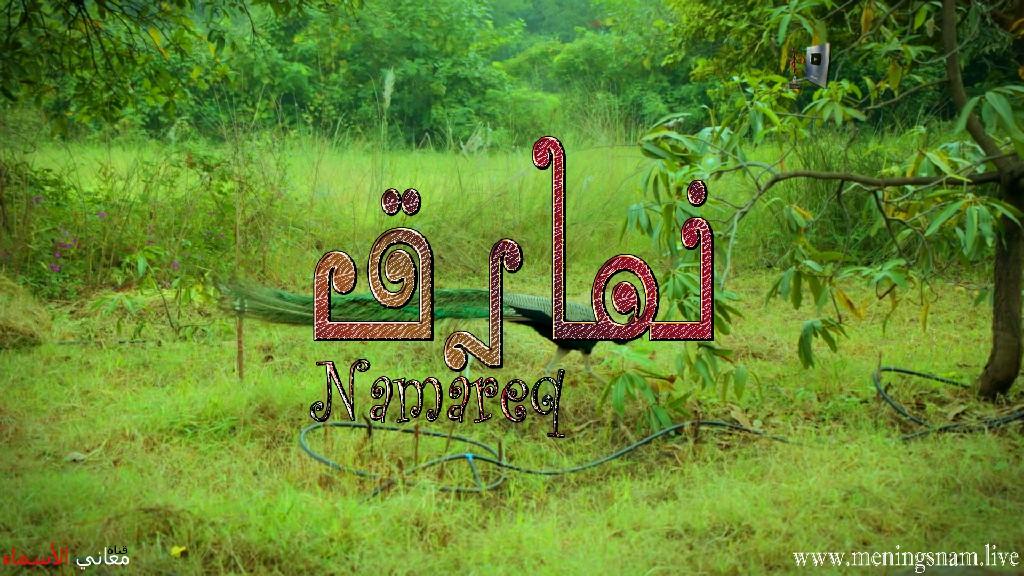 معنى اسم نمارق وصفات حاملة هذا الاسم Namareq