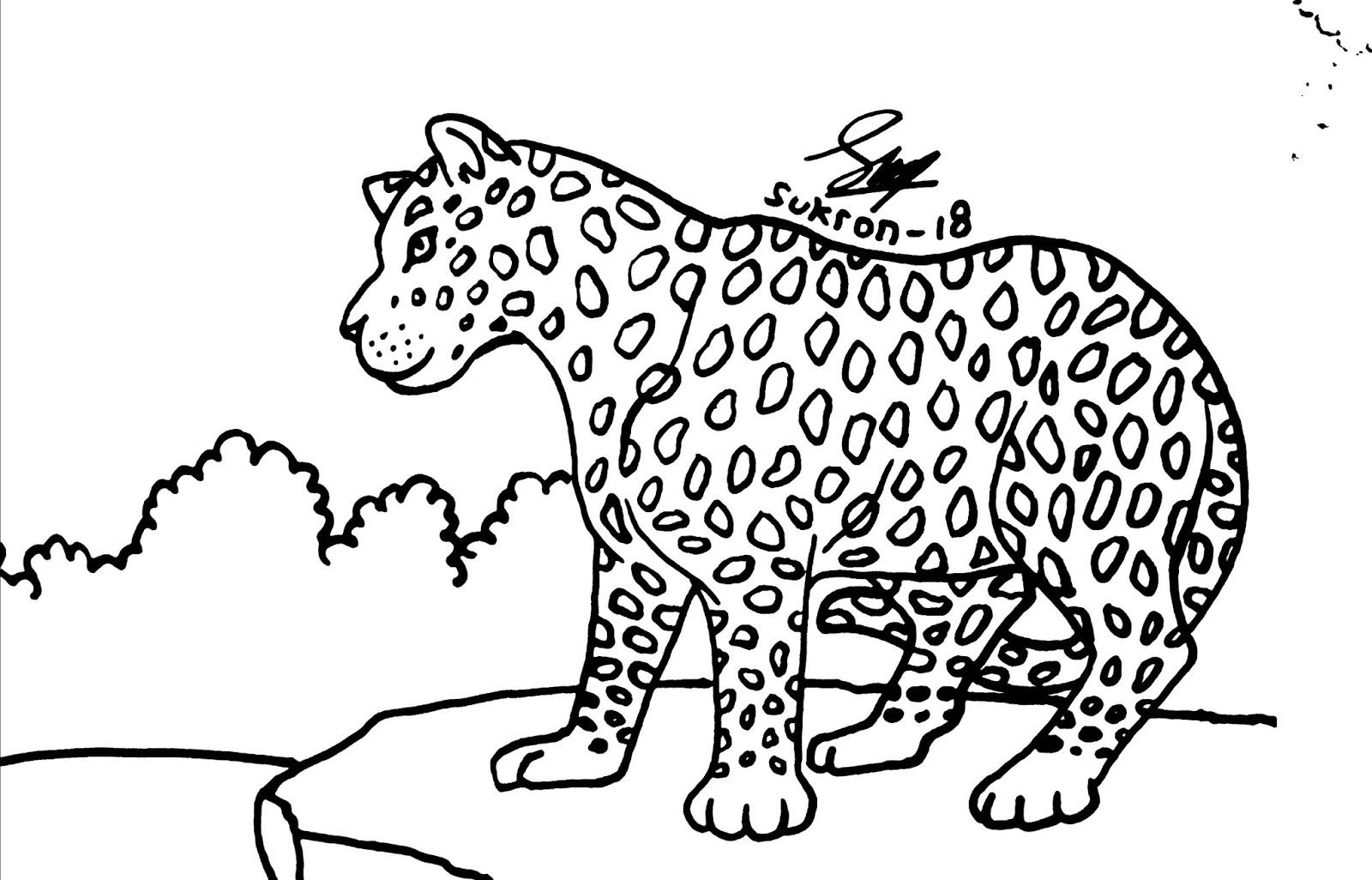 Gambar Mewarnai Hewan Macan