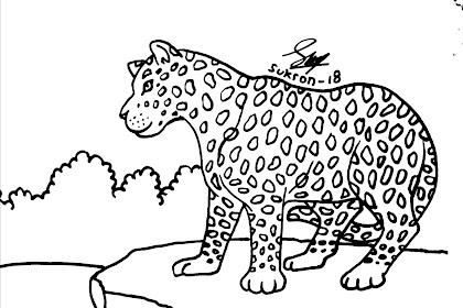 Label Untuk Postingan Gambar Macan Tutul Untuk Mewarnai Martias Db21