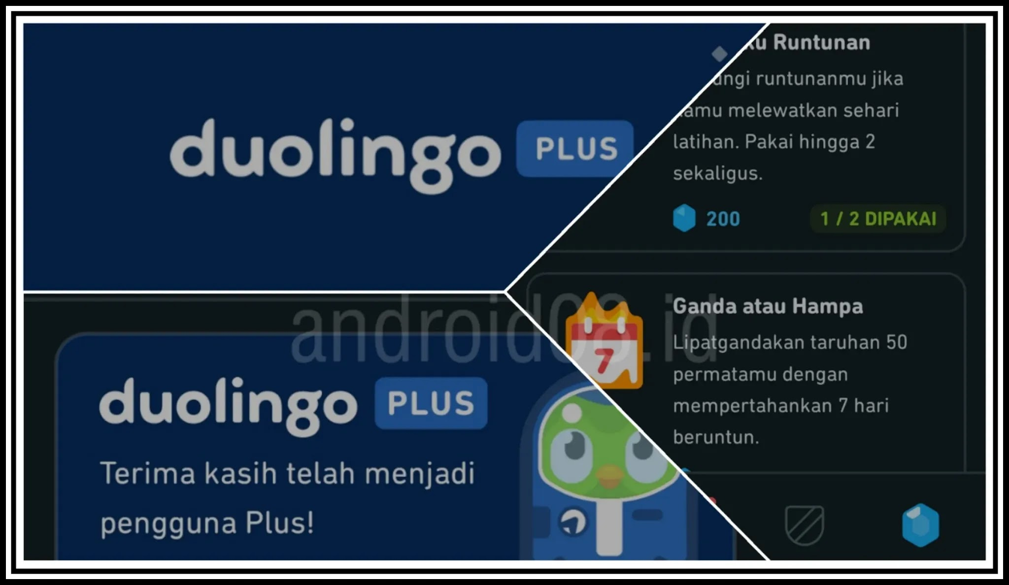 Download Duolingo Plus Apk Mod