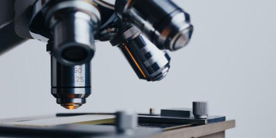 El CSIC y Crue firman con Elsevier un acuerdo para publicar artículos de los científicos españoles en acceso abierto