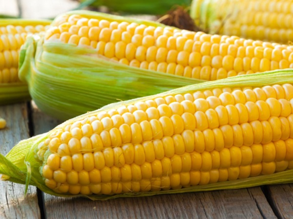 What are the benefits of maize?