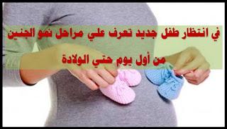 في انتظار طفل جديد تعرف علي مراحل نمو الجنين من أول يوم حتي الولادة