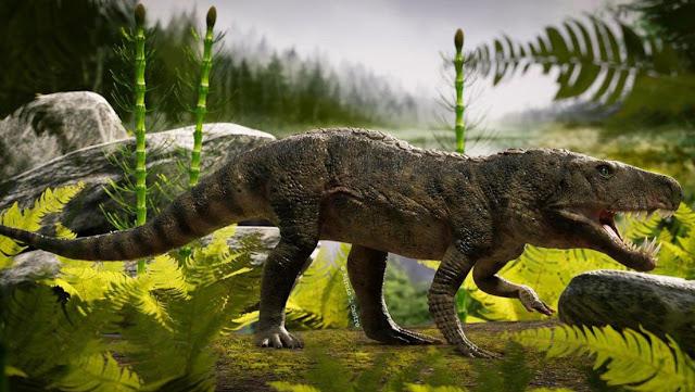 Hallan el fósil de un raro reptil prehistórico nunca antes visto en Brasil