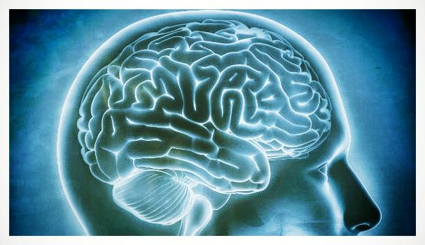 Brain Memory Test