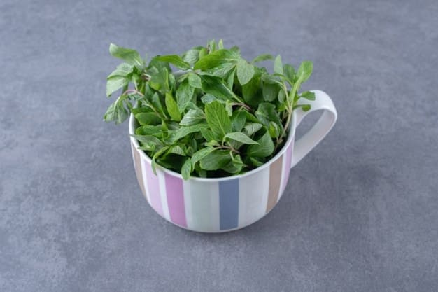 The benefits of mint that are a must-know