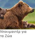Ντοκιμαντέρ για τα Ζώα
